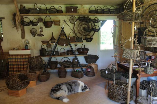 Atelier vannerie anim osier